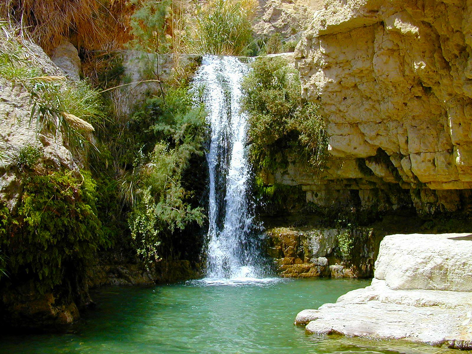 En_Gedi_Nahal_David_waterfall_tbn040900l